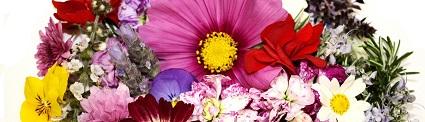 bloemsoorten