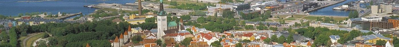 bloemen versturen naar  Estland