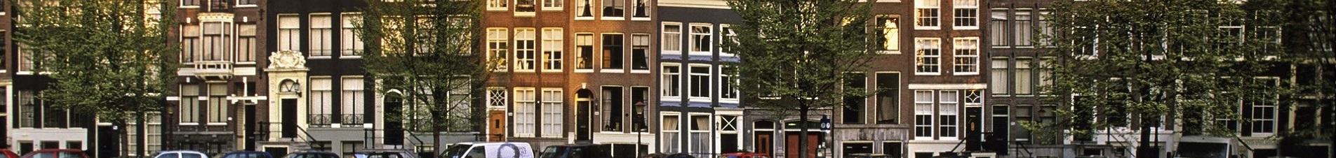 bloemen versturen naar  Nederland