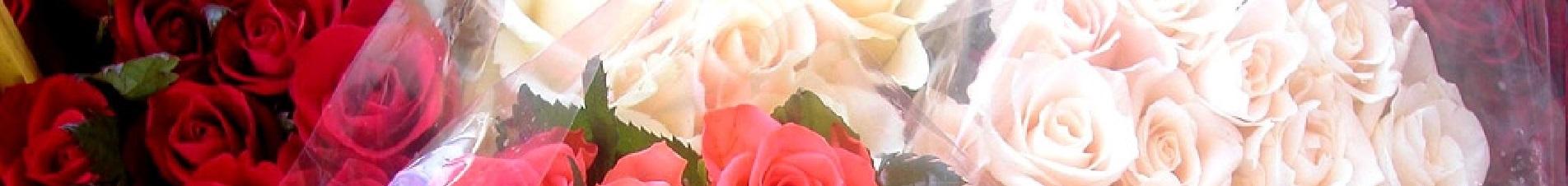 bloemen versturen naar  rozen