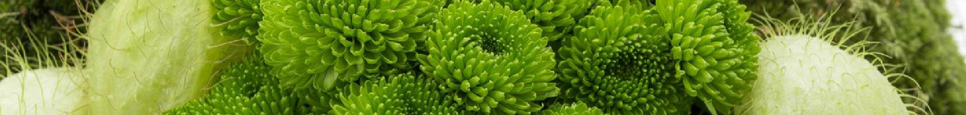bloemen versturen naar  santini