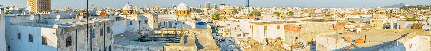bloemen versturen naar  Tunesië